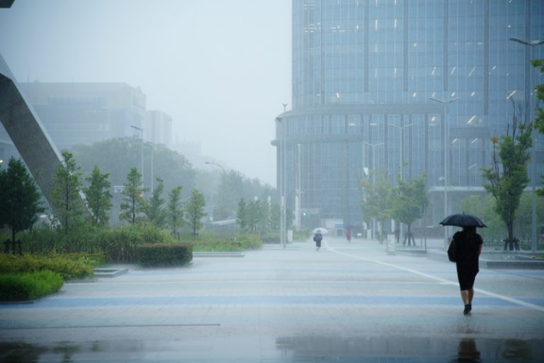 降りそそぐ、酸性雨