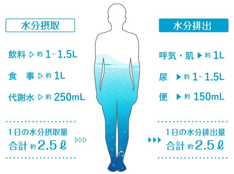 水分 一 量 の 日 水は1日どれくらい飲めば良いか